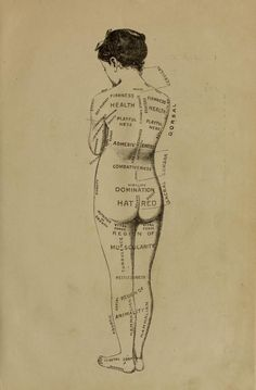 """nemfrog: """"Regions of the body. Therapeutic sarcognomy. The application of sarcognomy, the science of the soul, brain and body, to the therapeutic philosophy and treatment of bodily and mental diseases..."""