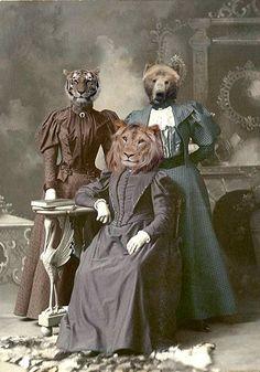 Animal Masks, Animal Heads, Illustrations, Illustration Art, Animal Art Prints, Photoshop Design, Weird And Wonderful, Art Plastique, Pet Clothes