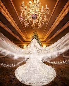 18 Romantic Wedding Photo Ideas to Take with Your Bridal Veil! Romantic Wedding Photos, Romantic Weddings, Wedding Pictures, Country Weddings, Junior Bridesmaid Dresses, Wedding Bridesmaids, Wedding Veil, Wedding Photography Poses, Wedding Portraits