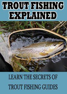 Expert Fishing Tips - Free Fishing Videos