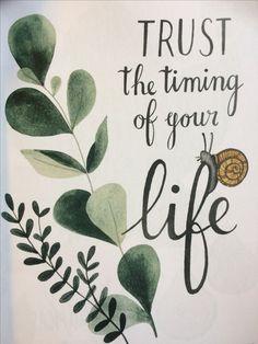Life   #flow