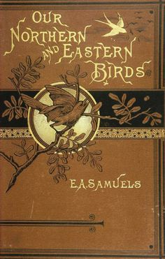Our northern and eastern birds. - Biodiversity Heritage Library