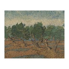 #Olive #Grove by Vincent Van Gogh #Wood #Canvas. #vangogh #art #posters #prints #reproductions #olives #trees #landscape #provence #france #expressionism #painting #vincent #orchard