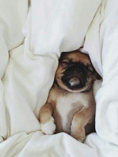 I sleeping