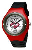 Bucky Badger And Wisconsin On Pinterest