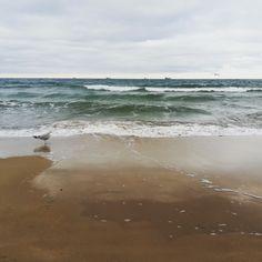 My Beach #gdansk #seagul #sea #beach #baltic Sea, Water, Life, Outdoor, Gripe Water, Outdoors, The Ocean, Ocean, Outdoor Games