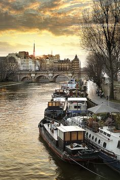 Quartier Saint-Germain-l'Auxerrois, Paris, Ile-de-France, by Antonio GAUDENCIO. Duncan Macleod lived on a house boat in Paris. Places Around The World, Oh The Places You'll Go, Places To Travel, Places To Visit, Around The Worlds, Paris Travel, France Travel, Paris France, Beautiful World