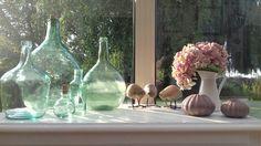 Cascade d'hortensia sur kiwis, oursins et dames Jeanne. ...