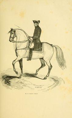 Traité d'équitation illustré : - Biodiversity Heritage Library