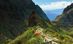 Wist jij dit over Tenerife? - zoover.nl