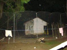 Essa casa atrás da cerca nova está condenada, será demolida.