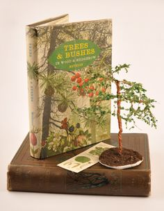 How to make miniature trees - Dolls House Magazine - Crafts Institute