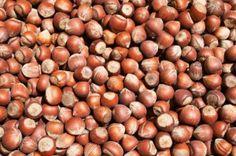 Olej z orzechów laskowych zimnotłoczony, organiczny  CUDNIE PACHNIE !!! <3