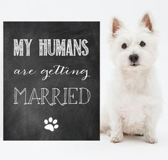 My humans are getting married dog sign Wedding by LillyLaManch