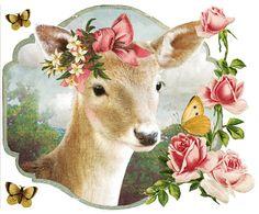 Kaartje of Kip <3 beautiful bambi deer fawn