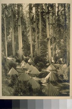 Tent City in the Bohemian Grove, 1906