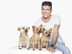 Simon Cowell teams up with beloved pet dogs in Rankin photo shoot Michael Fox, Prince Charles And Camilla, Simon Cowell, Animal Projects, American Idol, Dog Names, Small Dogs, Cruelty Free, Pet Dogs