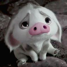 """Funny GIF - Pua, Piglet of Disney cartoon """"Moana"""" . Funny Disney Cartoons, Humour Disney, Funny Cartoon Faces, Funny Cat Gif, Cartoon Cartoon, Funny Gifs, Moana Disney, Disney Disney, Baby Animals"""