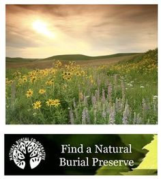 A directory of all Green Burial Sites in the United States, with a brief overview of green burial.