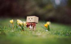 spring, flowers, smile ...