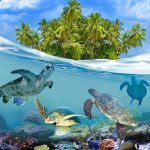 Top 10 Most Exotic Photos of The Maldives Islands | Top Inspired