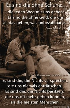 h with so much chemistry succeeds - Herzenssprüche - Hunde Motivacional Quotes, German Quotes, True Words, I Love Dogs, Animals Beautiful, Animals And Pets, Decir No, Best Friends, True Friends
