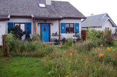 Front domu  #projekt #dom #elewacja