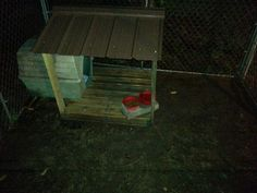 "Copper's ""dry food"" porch I built outta a pallet, and scraps."