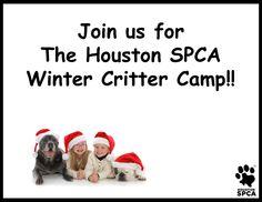 Critter Camp - Houston SPCA