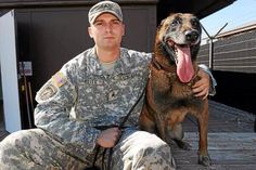 Military working dog, Chyan, was laid to rest with honors. @USArmy #Army http://www.macombdaily.com/opinion/20140711/service-circuit-military-dog-laid-to-rest-with-honors … pic.twitter.com/m6Ap85H9Z8