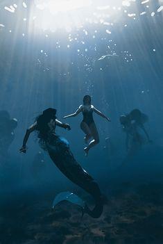 Fantasy World, Dark Fantasy, Fantasy Art, Mythical Creatures, Sea Creatures, Foto Portrait, Siren Mermaid, Concept Art World, Mermaids And Mermen