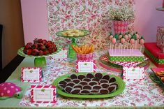 Meredith E's Baby Shower / Lily Pullitzer Pink Green Turtle - Photo Gallery at Catch My Party Girl Ninja Turtle, Lily Pullitzer, Baby Turtles, Turtle Baby, Green Turtle, Food Displays, Baby Shower Parties, Shower Party, Dessert Bars