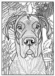 die 22 besten bilder von ausmalbilder hunde | ausmalbilder hunde, ausmalbilder und ausmalen