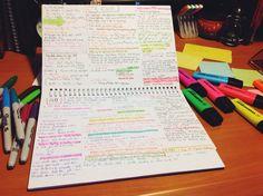 ―Jen's studying
