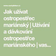 Jak užívat ostropestřec mariánský | Užívání a dávkování ostropestřce mariánského | vasbylinkar.cz