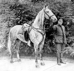 First MPD Police horse