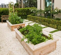 two raised vegetable garden beds