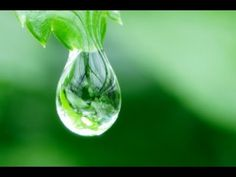 Abraham-Hicks: Drink Lots and Lots of Water | Law of Attraction Resource Guide