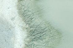Zack Seckler - Botswana