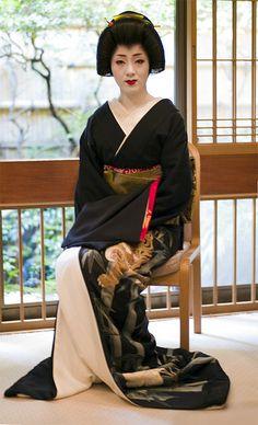 Geisha Kotoha on the day of her eri-kae. Her tiger kimono is to die for! Geisha Japan, Japanese Geisha, Japanese Beauty, Japanese Kimono, Japanese Folklore, Japanese Fashion, Kyoto, Kimono Chino, Samurai