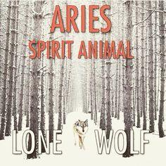 Aries lone wolf