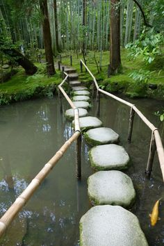 Stepping stones and bamboo in Tenjuan Garden, Kyoto, Japan