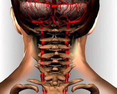 90% populácie s nedostatočnou telesnou hmotnosťou trpí cervikálnou osteochondrózou … Zastavte tento bludný kruh! | Báječné Ženy Beauty Detox, Good Advice, Healthy Tips, Body Painting, Healthy Lifestyle, Health Care, Beauty Hacks, Health Fitness, Hair Beauty