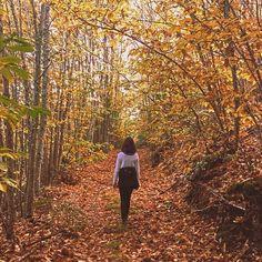 Fotos tumblr sozinha, portugal, ideias fotos para instagram, natureza, outono, tumblr girl, insta girl