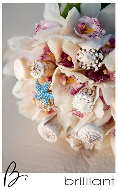 Shell Bouquet.  Turks and Caicos Islands