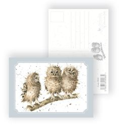 Postkaart | Owlies