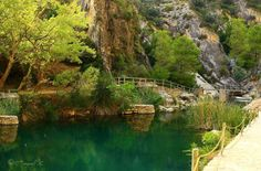 """Fontcalda is located in the town of Gandesa (Tarragona). Set between mountains, along the river Canaletes, the health resort """"Fontcalda""""  is a surprise for walkers. The road, linking Gandesa with Benifallet, the C-43, gives access to a forest trail to the site. Nearby, the Shrine of s. XIV, and unforgettable scene of the Battle of the Ebro, in the Civil War, to which has been dedicated a museum highly recommended."""
