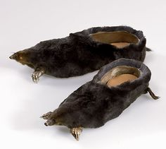 Anteaters shoes