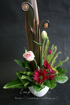 3月に入って、チューリップも晩成種が主役に。 晩成種にはパロット咲きのものや、マーブル模様など 個性的な品種が多いのが特徴で、選...