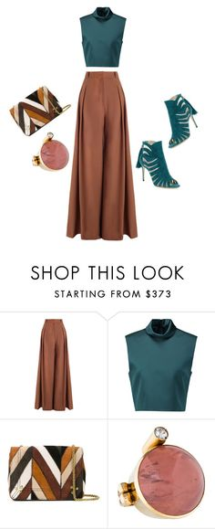 """""""Untitled #261"""" by myriamsarah ❤ liked on Polyvore featuring Zimmermann, TIBI, Jérôme Dreyfuss and Paul Andrew"""